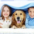 Çocukların sosyalliği için hayvan besleyin